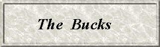 TheBucks